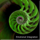 Integration Series : All Four Recordings : Pure Frequency Medicine